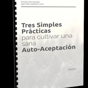 Tres simples prácticas para cultivar una sana auto-aceptación