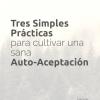 Cover.Auto-Aceptación-1410×2250-panda